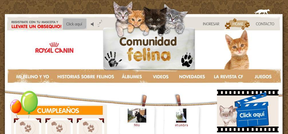 Comunidad Felina