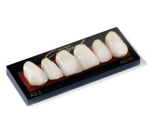 zęby do protez