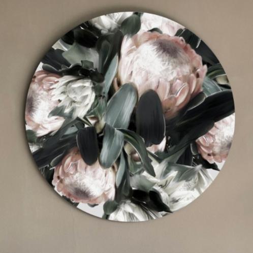Protea - Circle Art