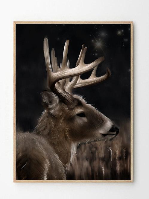 Bukken / Deer