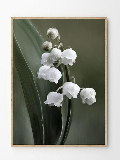 Liljekonvall /  Lily Of The Valley