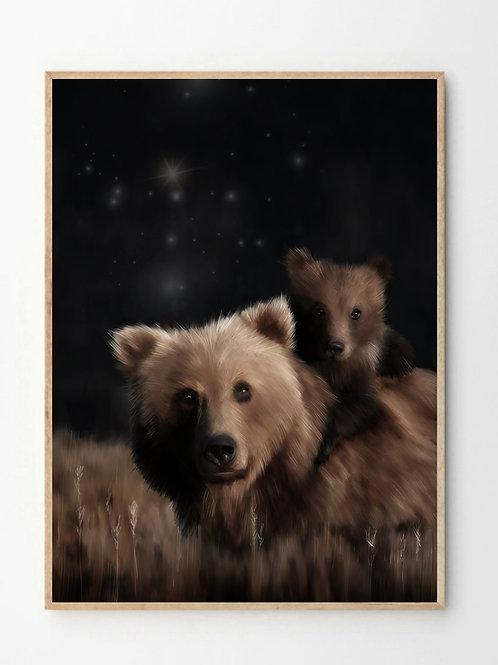 Bjørnen / Bear