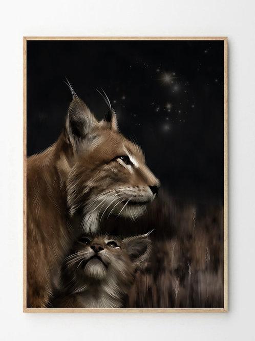 Gaupa / Lynx cat