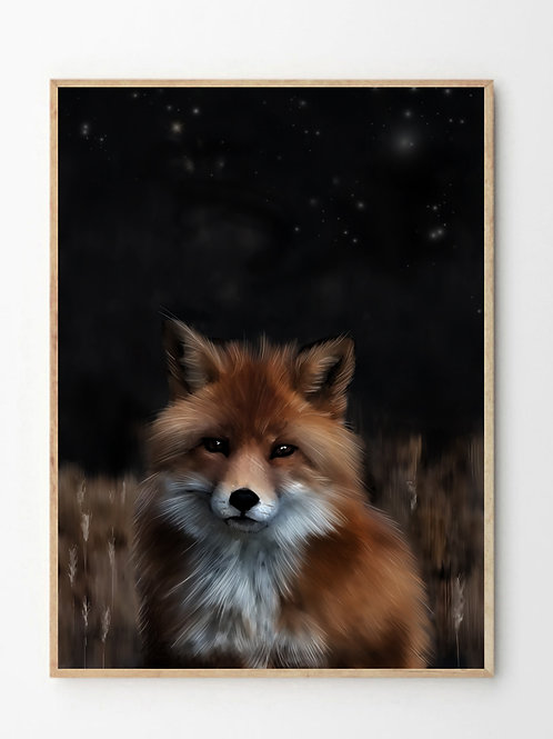 Reven  / Fox