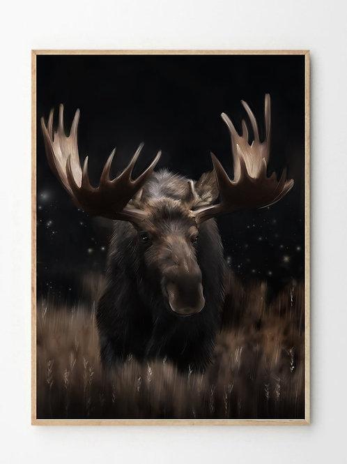 Elgen / Moose