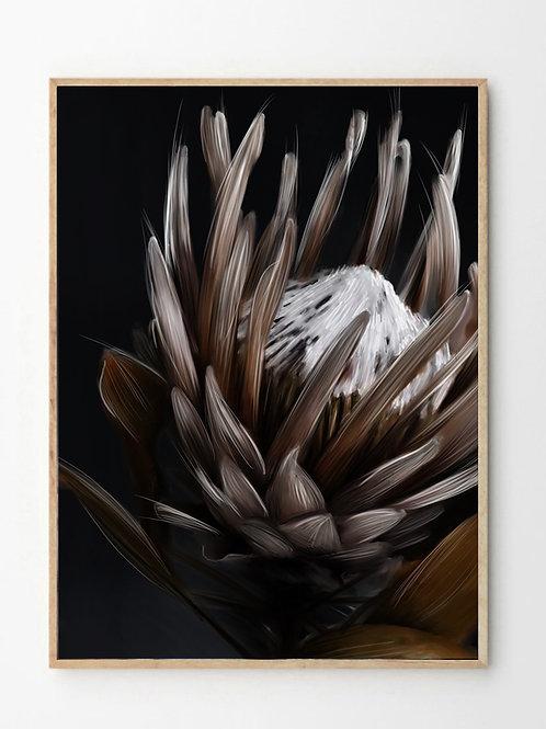 Protea 2.0