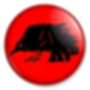 Raven-Archealogy-2.jpg