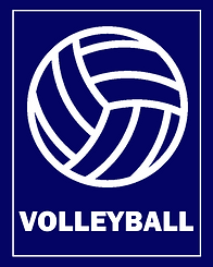camp graphics - vball.png