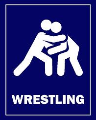 camp graphics - wrestling.png