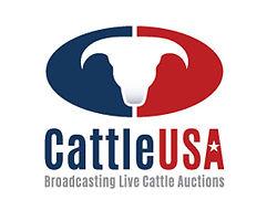 Cattle-USA.jpg