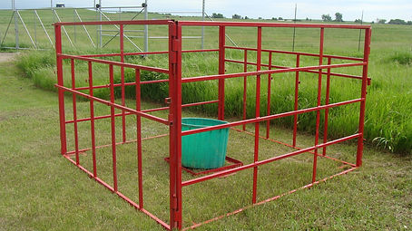 calf feeder pen.jpg