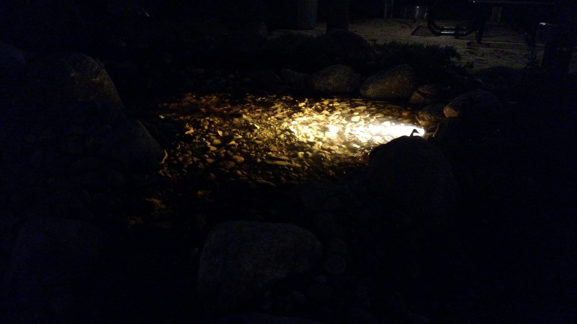 Patio, Lighting, Water Feature & Landscape