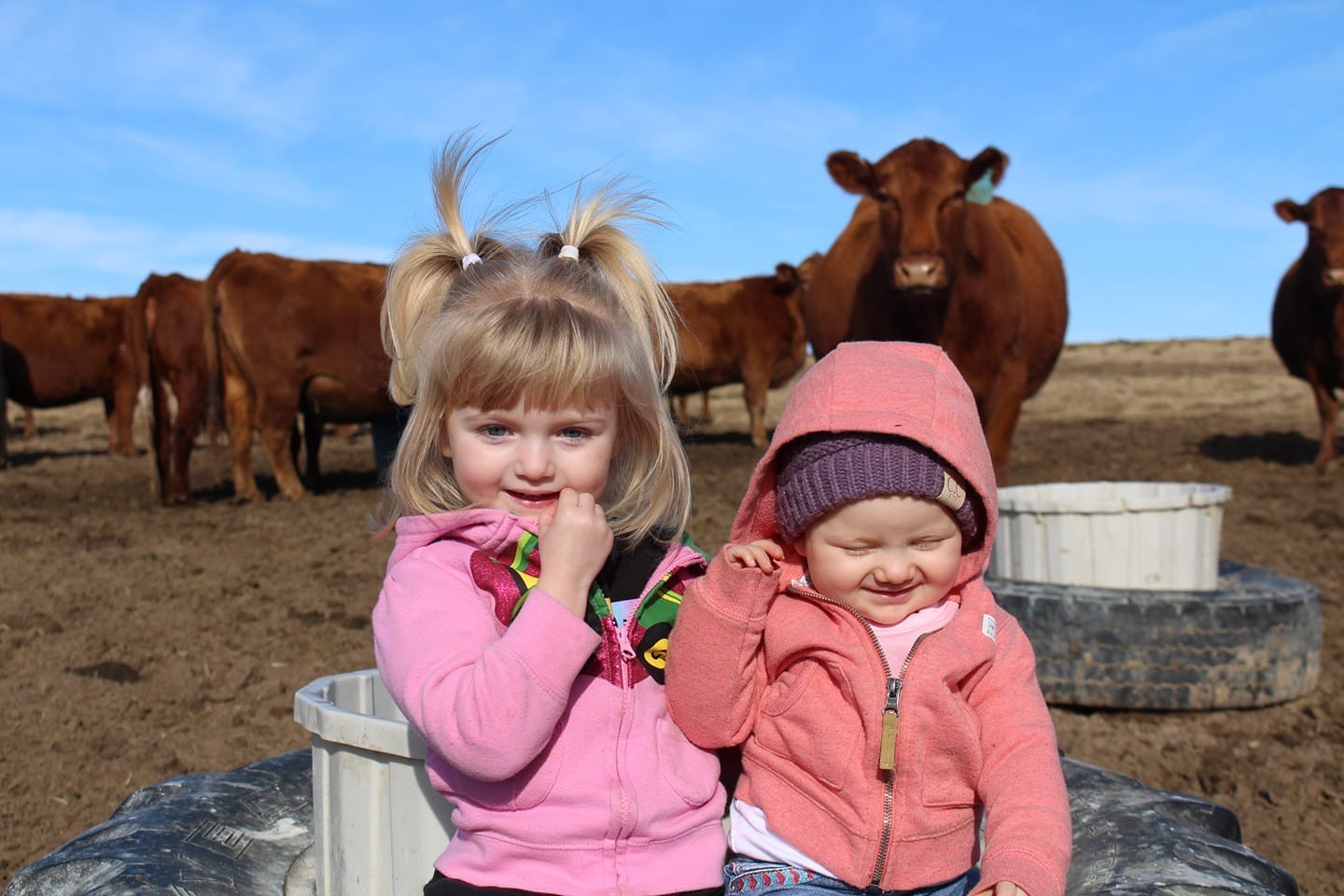 Raelynn and Emeri Hovorka hanging out with some of their best buds. Daughters of Keith and Debbie Hovorka.