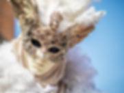 venice-carnival-mask-costume-0110.jpg