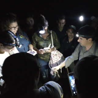 Taller de anfibios y reptiles Tirimbina