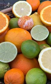 Citrus_edited.jpg