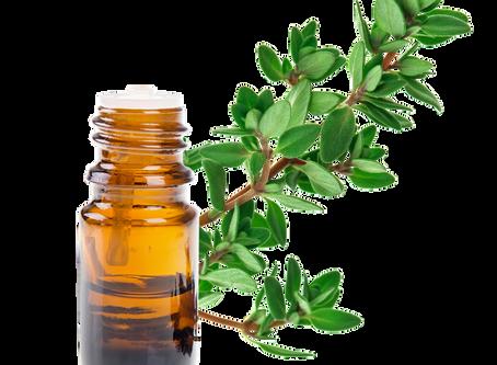 L'huile essentielle de THYM