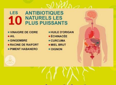 On me demande souvent ou trouver dans l'alimentation des antibiotiques naturels ?