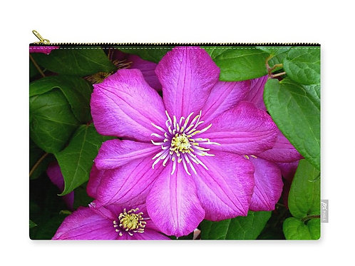 Close-up of Dark Pink Clematis Flowers, Zip Carry Pouch