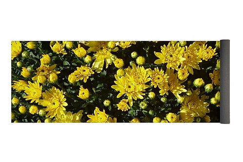 A Collection of Bright Yellow Mums, 24x72 Yoga Mat