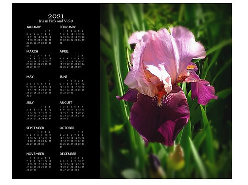 2021 Iris in Pink and Violet Calendar, 8x10 One Page Calendar