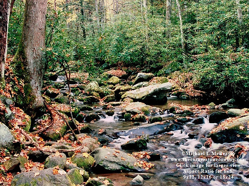 Roaring Fork River, Great Smoky Mountains National Park