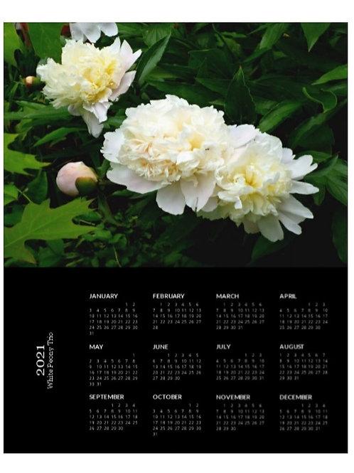 2021 White Peony Trio Calendar, 8x10 One Page Calendar