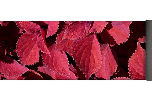 Red Leaf Coleus Close-up, 24x72 Yoga Mat