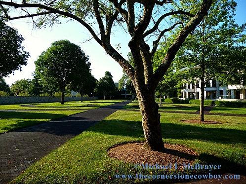 Keeneland Paddock Area Photo, Kentucky Horse Racing
