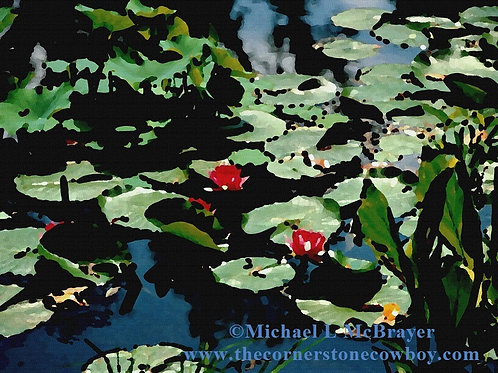 Red Water Lilies, Oil Effects Photo