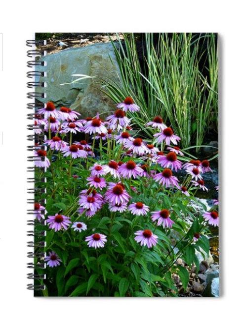 Garden Stream and Purple Coneflowers, 6x8 Spiral Notebook