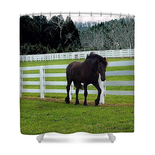 Friesian Horse in Pasture Shower Curtain, 71 wide x 74 tall