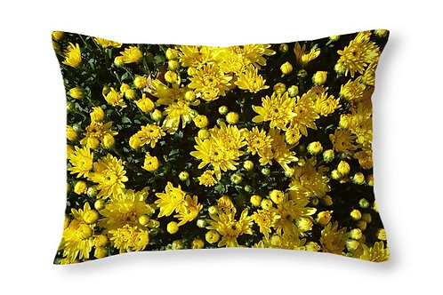 Closeup of Yellow Mums, 20x14 Rectangular Accent Pillow