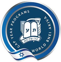 WBA gap year programs_small.jpg
