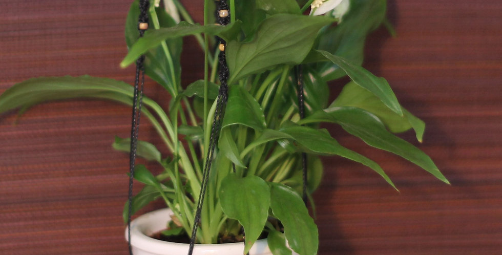 Blumenampel Makramee klein