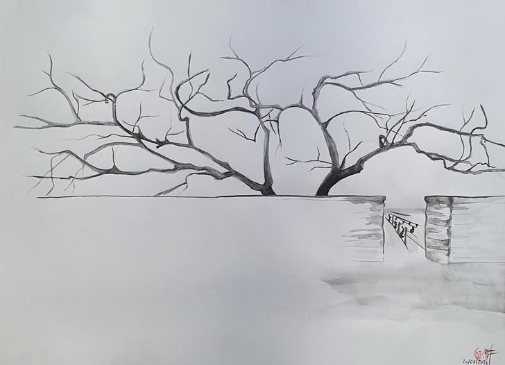 Le Clos 2, 2021, pinceau et encre de chine sur papier, 20x40 cm