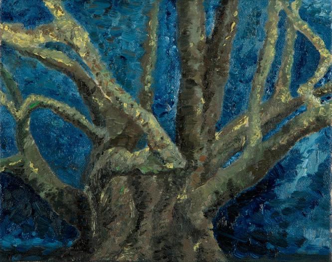 L'arbre, 2015, huile sur toile,19x24cm