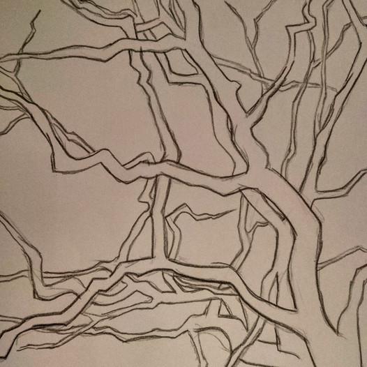 Branches, 2020, mine sur papier, 25x30cm