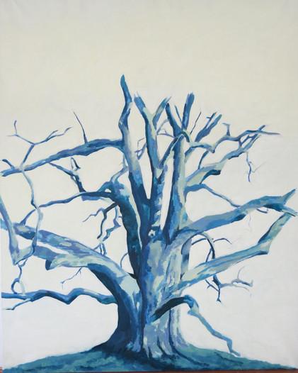 Etude arbre, 2015, huile sur toile