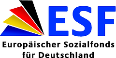 ESF_BMA_ESF_ES_CMYK_tr(1).eps-1_300.png