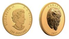 Neue Münze aus Kanada: Auffallender Bison