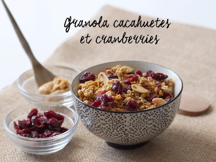 Granola beurre de cacahuète et cranberries