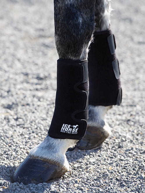 Ice Horse Universal Tendon Leg Wrap - Single
