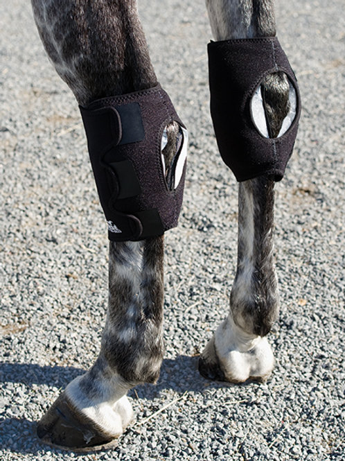 Ice Horse Hock Wrap - Pair