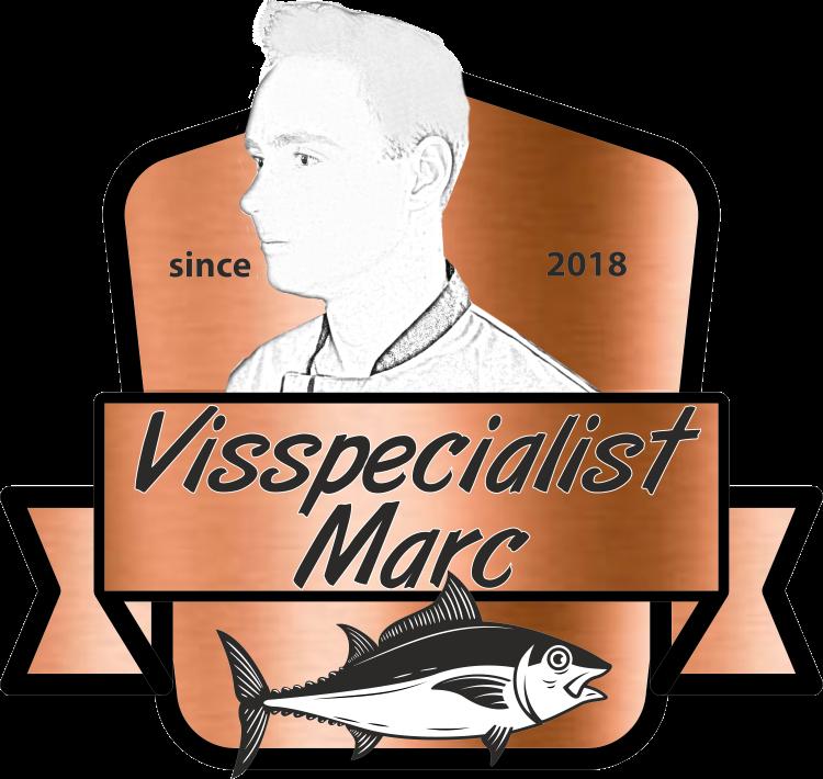 visspecialist-logo.png