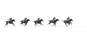 polo_sequence.png