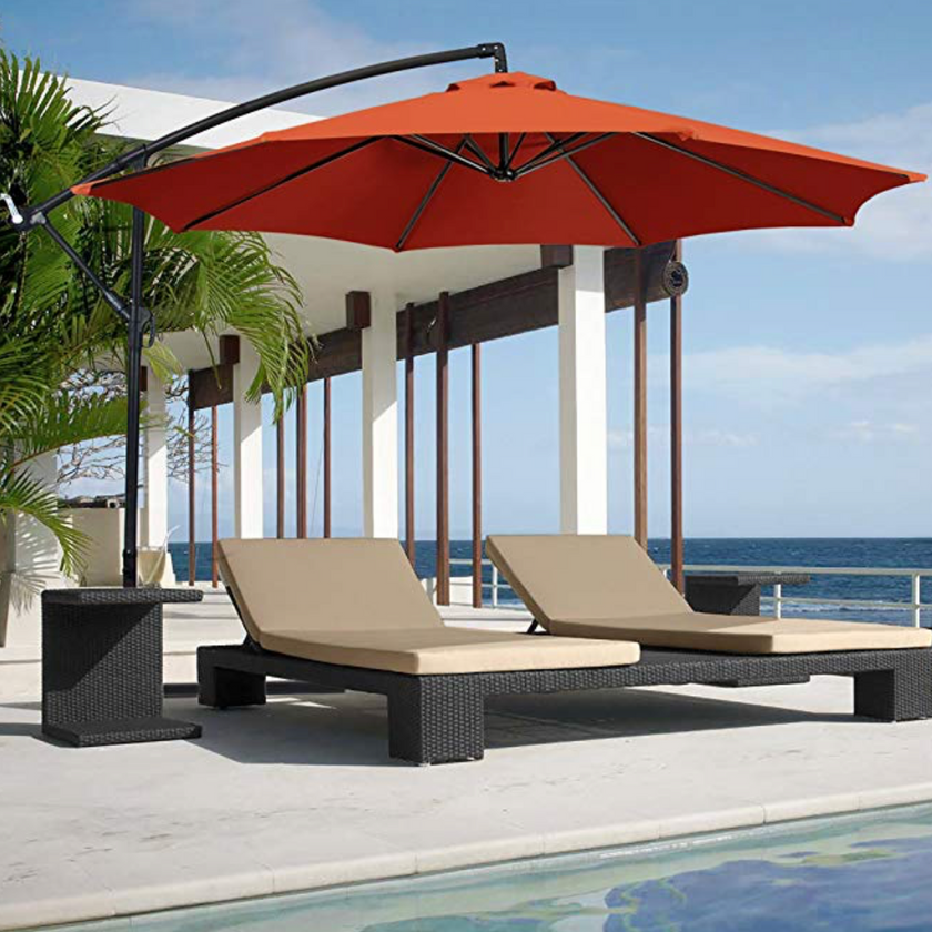 Backyard umbrella dogs Long Beach Cool