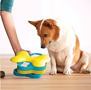 Puppy Puzzle Toy For Your New Puppy Training | Pet Waggin' Pet Care