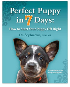 Puppy Training Book: Perfect Puppy in 7 Days | Pet Waggin' Pet Care