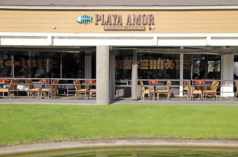 Playa Amor Is Dog & Pet-Friendly Long Beach Mexican Restaurant